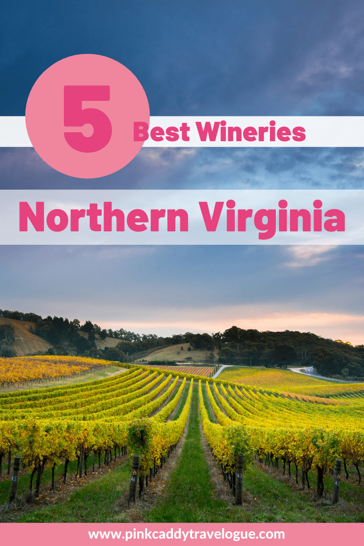 Located just one hour outside of Washington, DC, Leesburg is the perfect getaway for wine-lovers visiting the nation's capital. Here's a list of the best wineries near Leesburg, VA to check out! #virginia #usa #wineries #travel #washingtondc