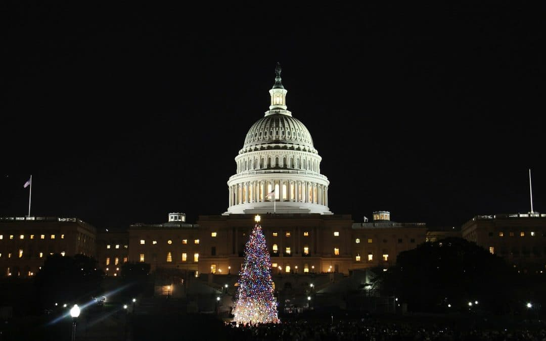 Best Ways to Spend Christmas in Washington DC