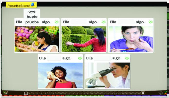 rosetta stone ways to learn a language