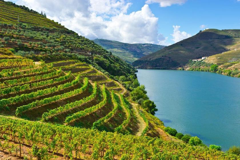 The Best One-Day Douro Valley Tour