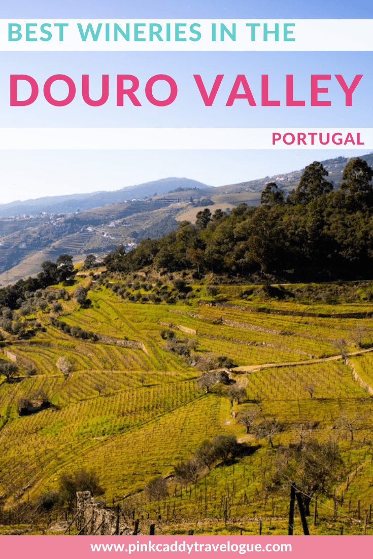 Portugal is home to the world's oldest demarcated wine region! It's a must-visit for any wine-lover. Here are the best wineries in the Douro Valley that you need to visit! #portugal #wine #dourovalley
