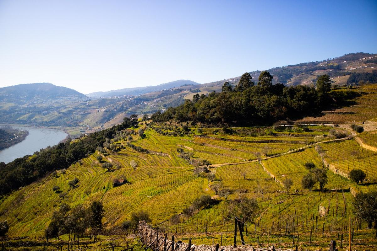 Best Wineries in the Douro Valley - Pink Caddy Travelogue
