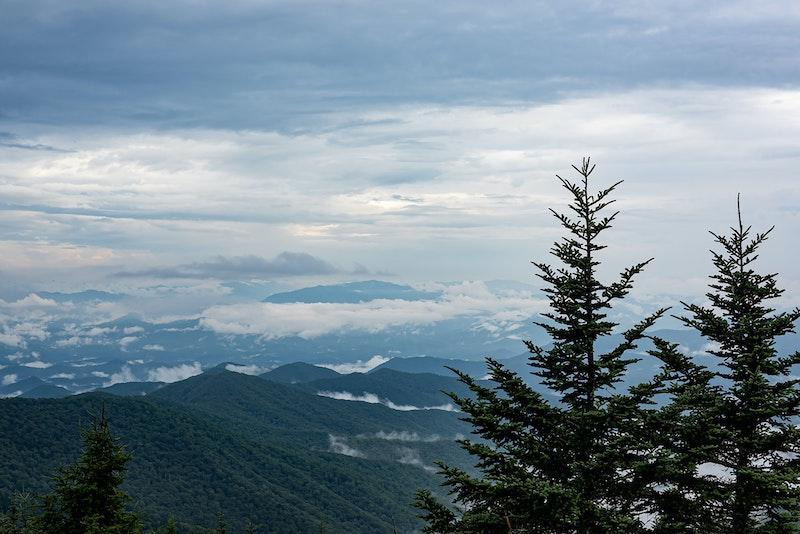 Short and Scenic Clingmans Dome Hike